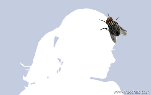 Scarica l 39 immagine di profilo con una mosca - Colorazione immagine di una ragazza ...
