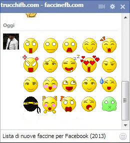 faccine facebook 2013