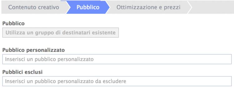 pubblico personalizzato power editor