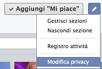 Privacy mi piace