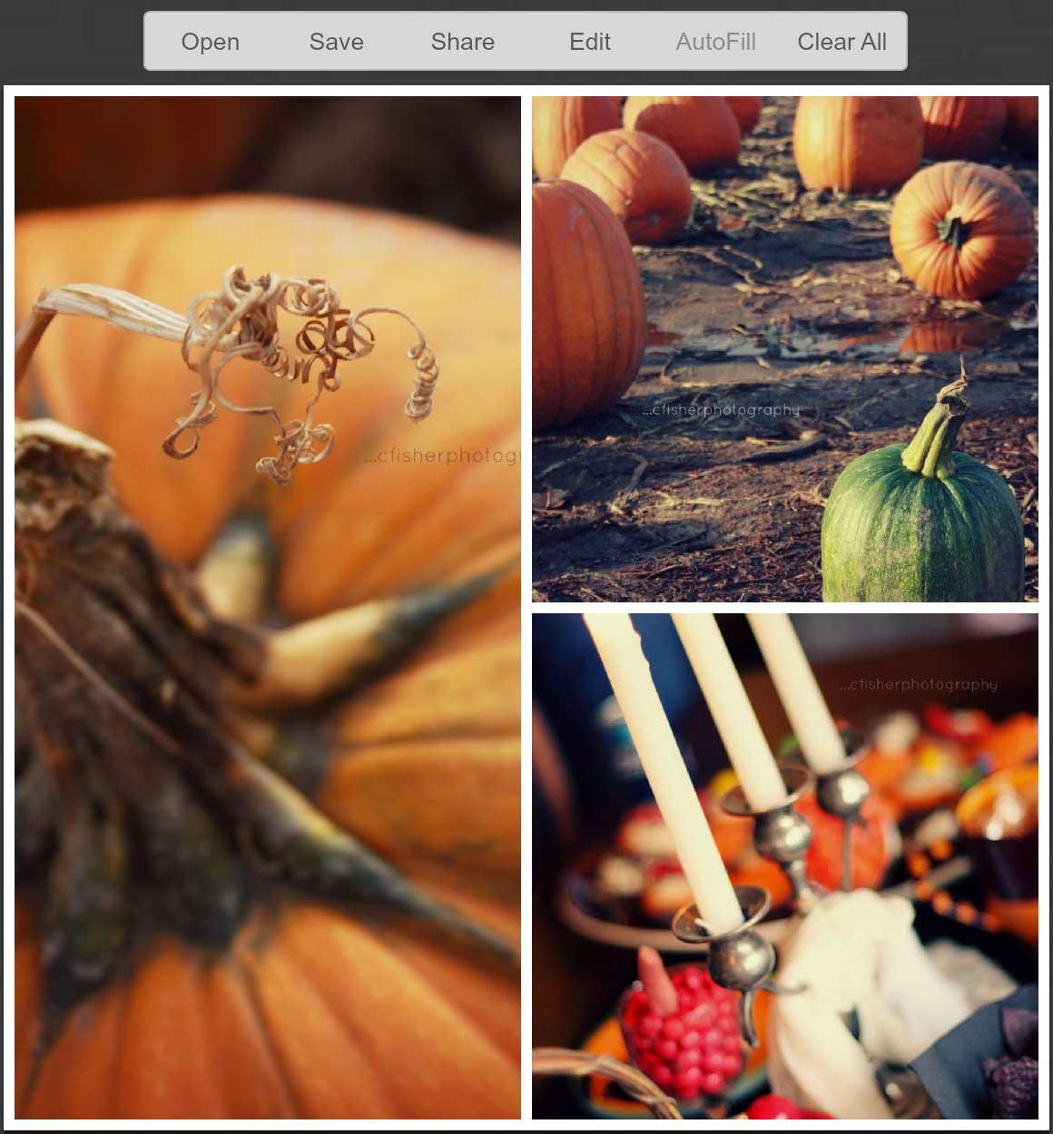 collage-picmonkey