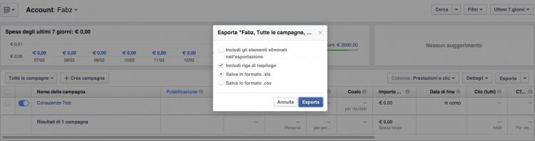 esporta campagne facebook ads