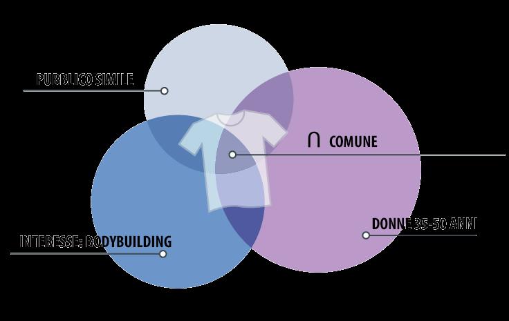 esempio-audience-overlap