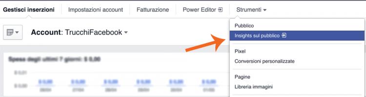 Accesso Insights sul Pubblico Facebook