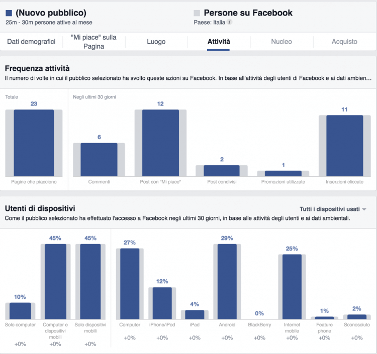 attivita facebook audience insights